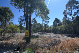 Sugarloaf - 5 Acres - Ex-forestry – 12 Minutes To Stanthorpe