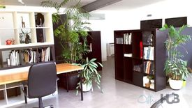 Abundance Of Natural Light   Creative Space   Fully Furnished