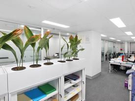Fitout & Furniture - Quality Office Next To Martin Place