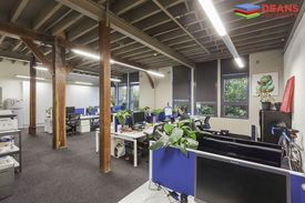 Funky Creative Open Plan Office In Ultimo !