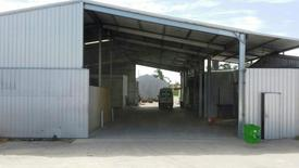 Market Garden Shed For Lease - 871sqm